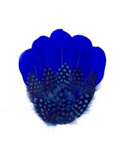 Grand Zozo Bleu